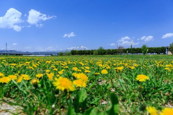 Uターン転職のメリット③:自然環境がいい。